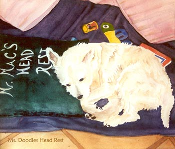 Dog resting on pillow