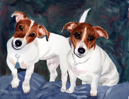 Jack Russell Terriers(Click Here to go to Next Page)